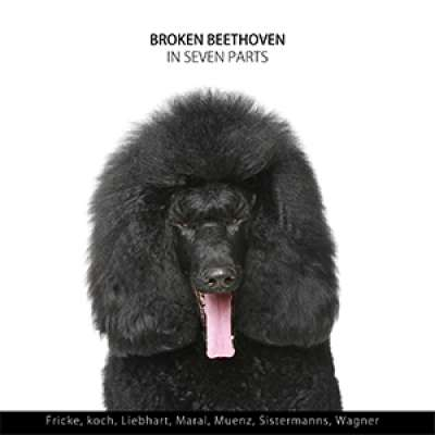 Broken Beethoven in Seven Parts
