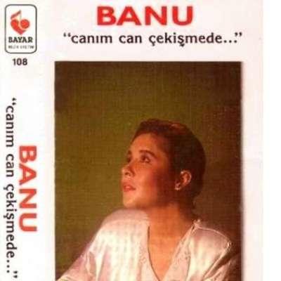 Banu Kırbağ