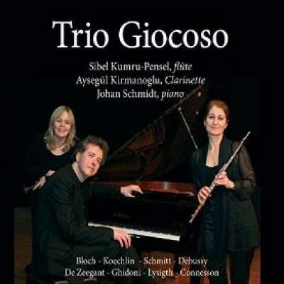 PRELUDE A L'APRES-MIDI D'UN FAUNE (TRIO GIOCOSO)