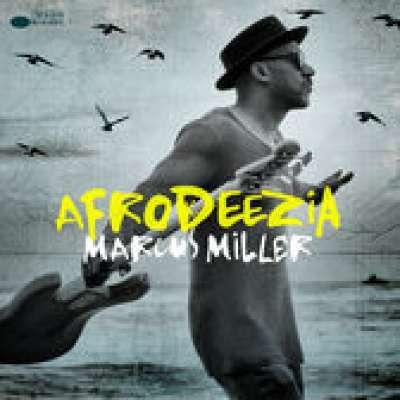 Afrodeezia