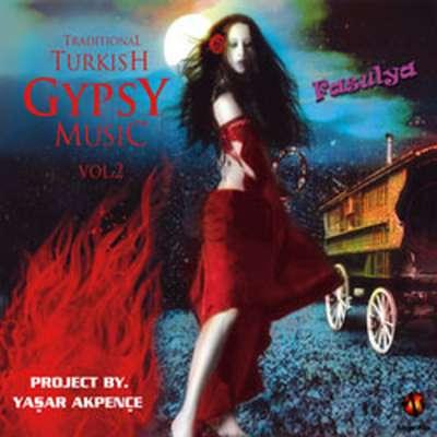 Traditional Turkish Gypsy Music Vol. 2