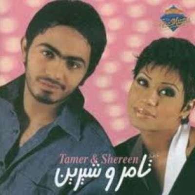 Tamer W Shereen
