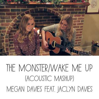 The Monster / Wake Me Up (Acoustic Mashup)