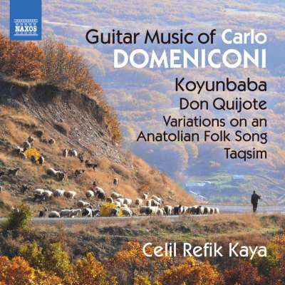 Domeniconi: Guitar Music