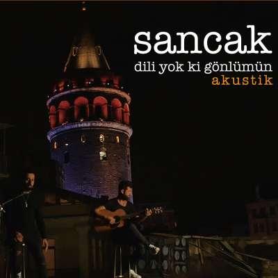 Dili Yok Ki Gönlümün (Akustik)