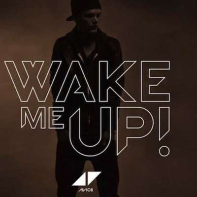 Wake Me Up (PANG! Slow Things Down Mix)