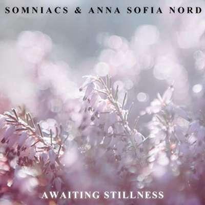 Awaiting Stillness