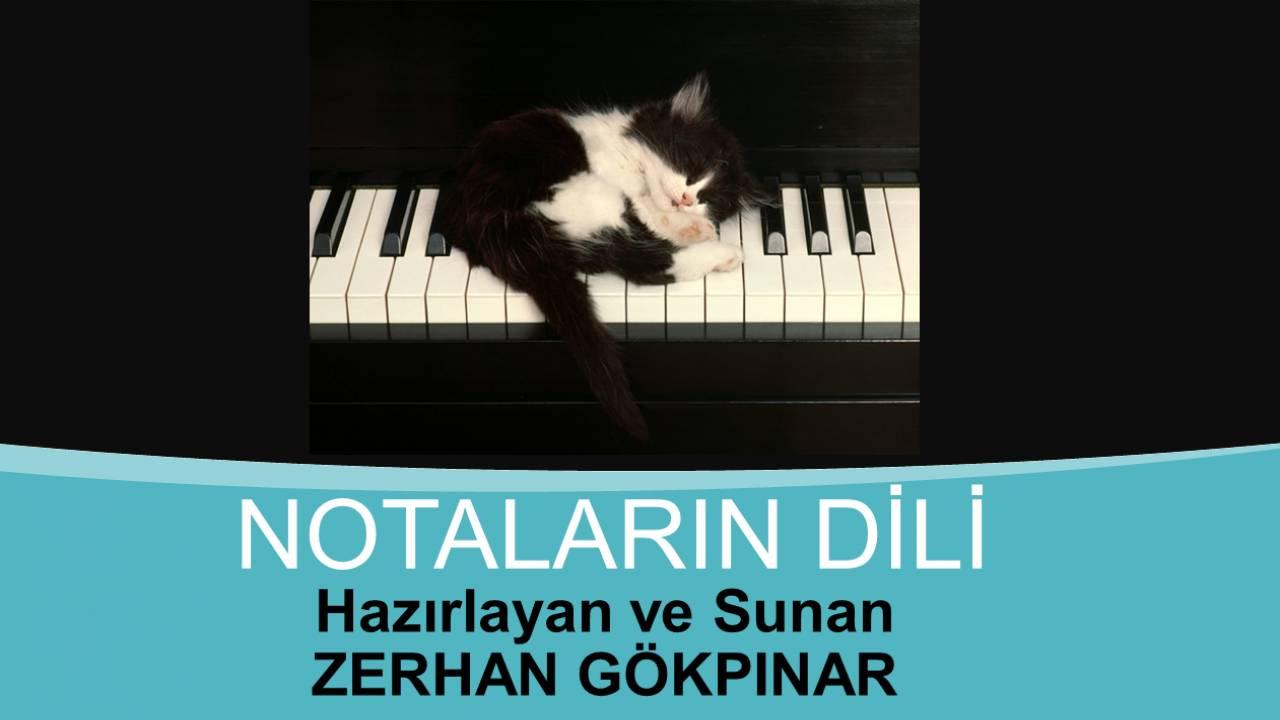 Zerhan Gökpınar