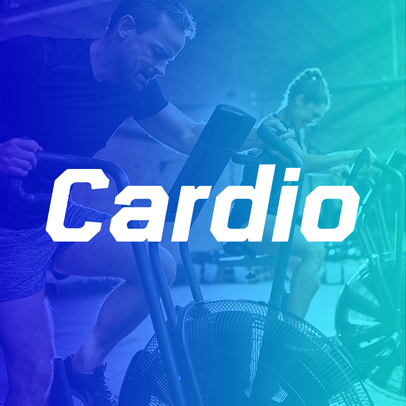 BORN TO LOVE