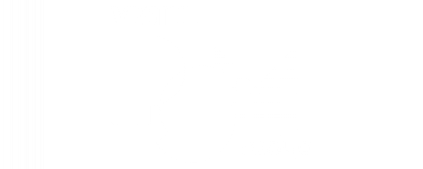 Vestel PSM Radyo